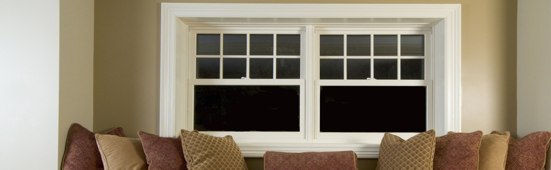Mold on Windows: Tips for Removal and Prevention